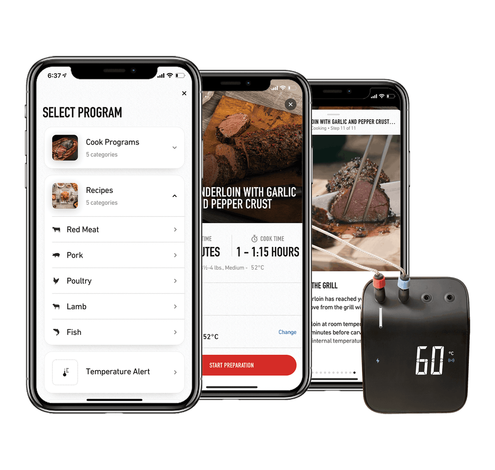 Weber Interactive Thermometer - Smart Grilling HUB